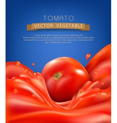 Splashes waves of red tomato juice and tomato vector