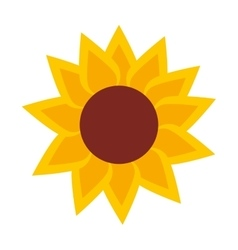 sunflower isolated icon design vector image