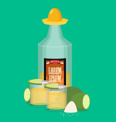 Tequila bottle salt lemon flat vector