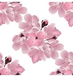 Japanese cherry Seamless Bouquet of pink sakura vector image