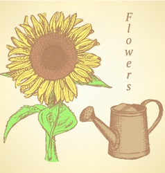 Watering can sunflower vector