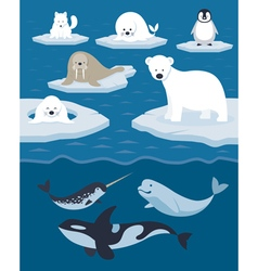 Arctic animals character and background vector