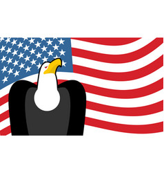 Bald eagle and us flag symbol of america vector