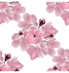 Japanese cherry Seamless Bouquet of pink sakura vector image