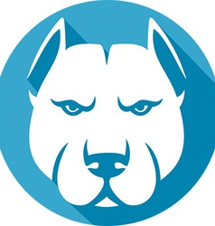 Pitbull Icon vector image vector image