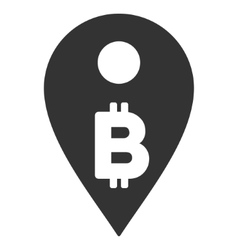 Bitcoin Map Marker Flat Icon vector image