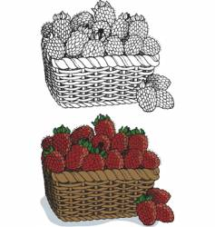 Basket of raspberries vector