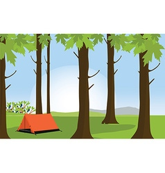 Campsite in summer forest vector