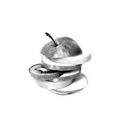 Sketch painting apple on a white background vector image vector image
