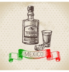 Mexican traditional food background with tequila vector image