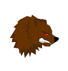 Angry bear aggressive grizzlies with grin wild vector