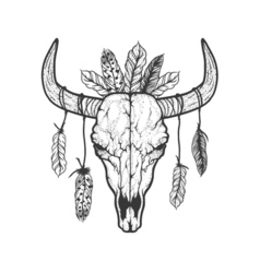 Bull skull with feathers native Americans tribal vector image vector image