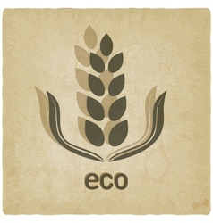 Organic grain old background vector