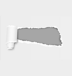 ripped hole in sheet of paper with soft shadow vector image vector image
