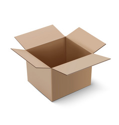 Carton package box vector