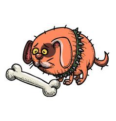 Cartoon image of small fat dog vector