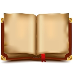 Old open book vector image vector image