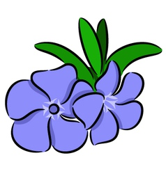 Periwinkle Flower vector image vector image