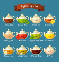 Types of tea set of glass kettles with different vector