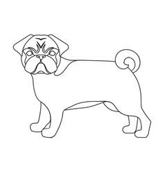 Bulldog single icon in outline stylebulldog vector