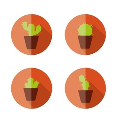 Cactus flat icons vector