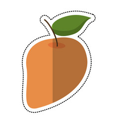 cartoon mango juicy fruit icon vector image
