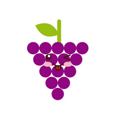 Grape fruit icon vector