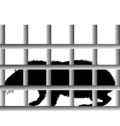 Guinea pig in cage vector
