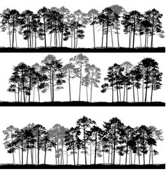 Landscapes with pine trees vector