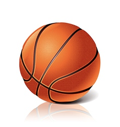 object basketball ball vector image vector image