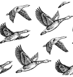 Flying geese vector