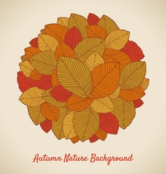 leafs pattern autumn vector image