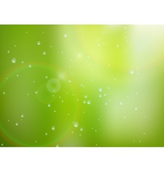 Natural water drops on glass plus EPS10 vector image