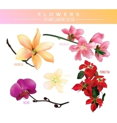 Flowers editable gradient vector