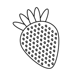 Fresh strawberry fruit delicious vector