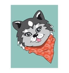 Husky dog cartoon husky dog husky dog portrait vector