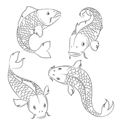 Carps sketches vector