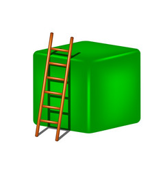Green cube and wooden ladder vector