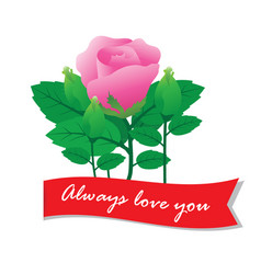 Always love you with rose vector