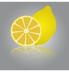 Colorful lemon eps10 vector