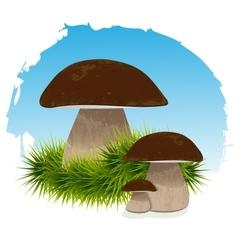 Mushrooms in grass under blue vector image