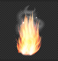 transparent realistic fire flame bonfire vector image