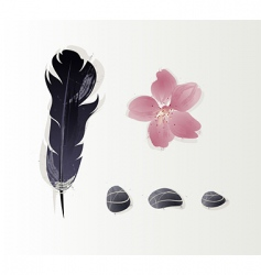 Stones and feathers vector