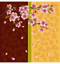 Oriental background sakura Japanese cherry tree vector image