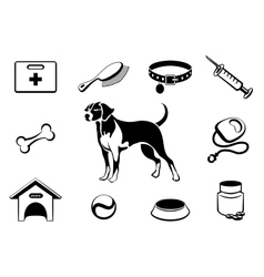 Dog vet clinic icons vector