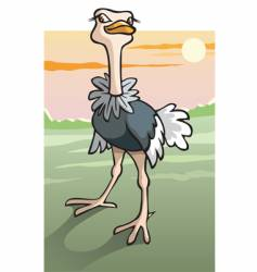 cartoon ostrich in Savanna vector image