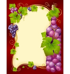 grape frame vector image