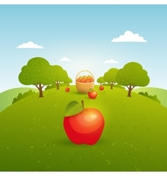 Apple garden vector image