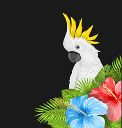 Parrot white cockatoo with colorful hibiscus vector