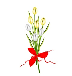 Lovely fresh tulip bouquet with red ribbon vector